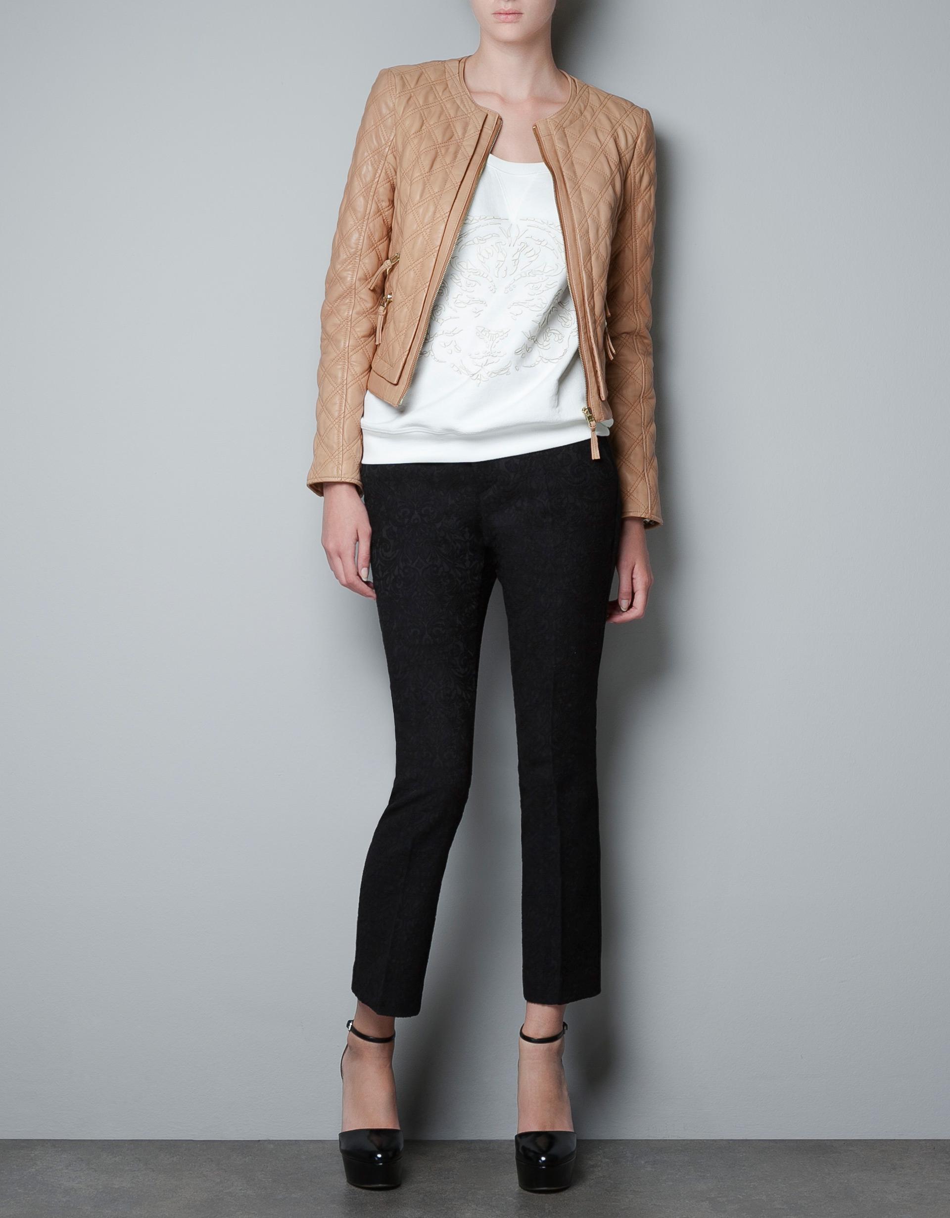 leather jackets for women zara wwwpixsharkcom images