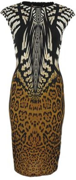 Roberto Cavalli Roberto Cavalli Dress in Animal (black)