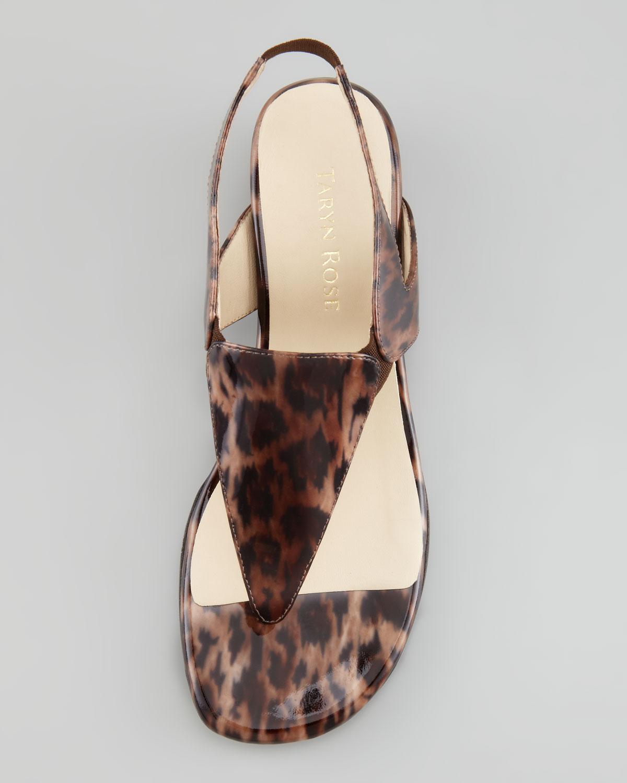 Lyst Taryn Rose Leopard Thong Sandal In Brown