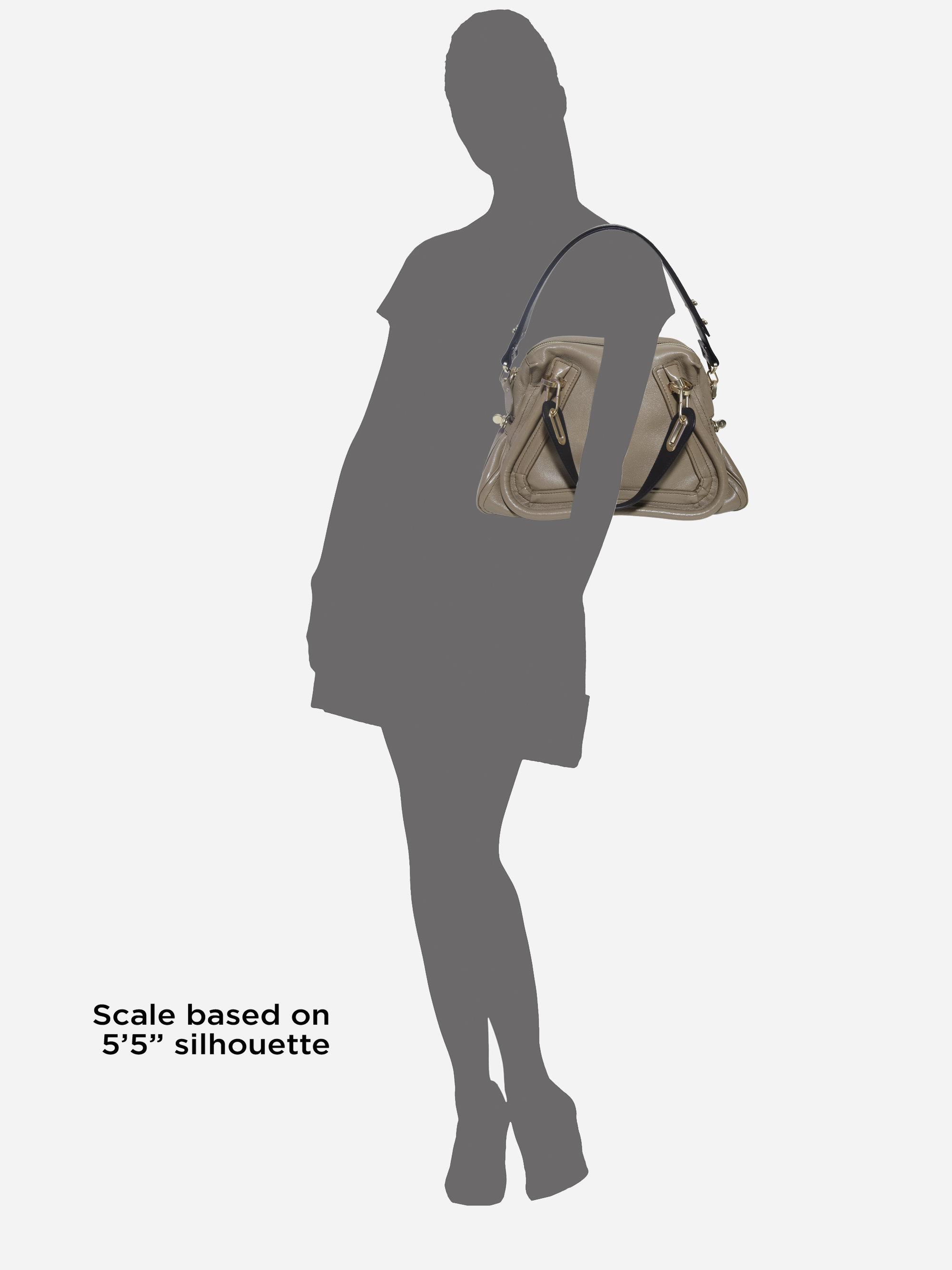 Chlo�� Paraty Medium Colorblock Shoulder Bag in (ivy jungle) | Lyst