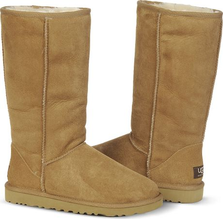 ugg boots brown tall - photo #14