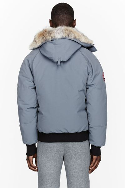 Grey Canada Goose Chilliwack Canada Goose Grey Down And