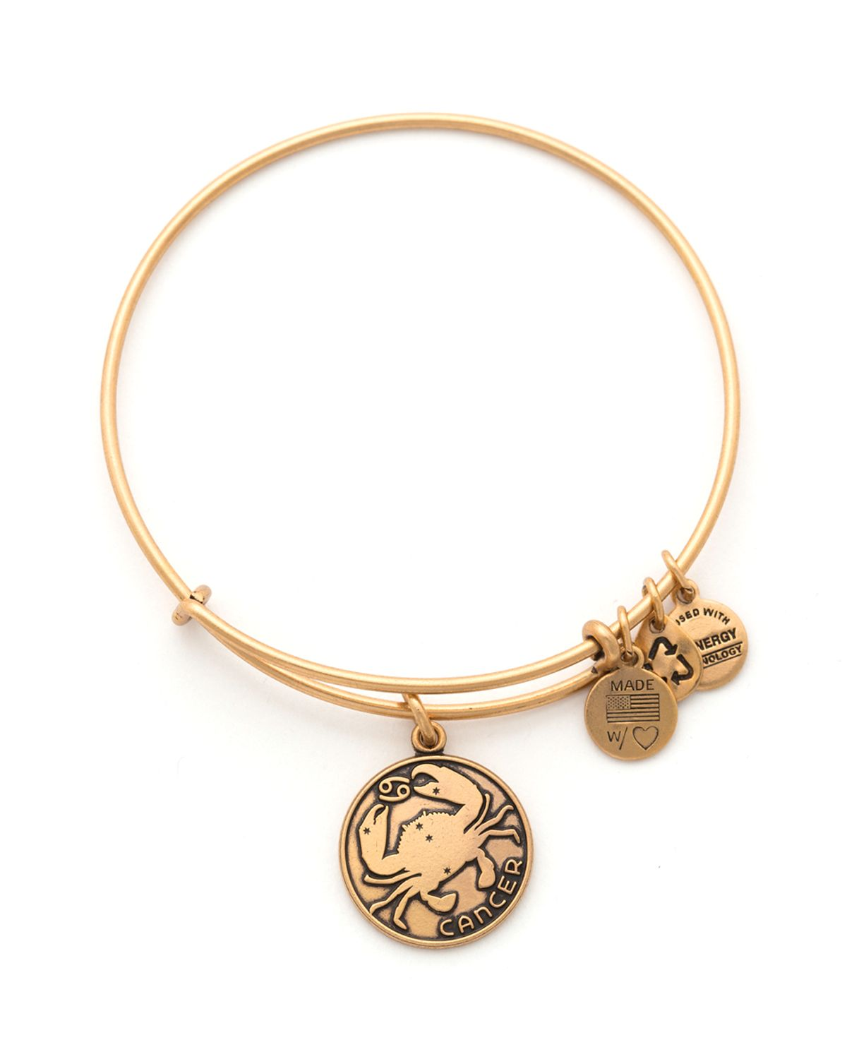 Alex And Ani Cancer Bangle In Metallic Lyst