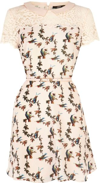 Oasis Bird Lace Trim Skater Dress In Beige Natural Lyst