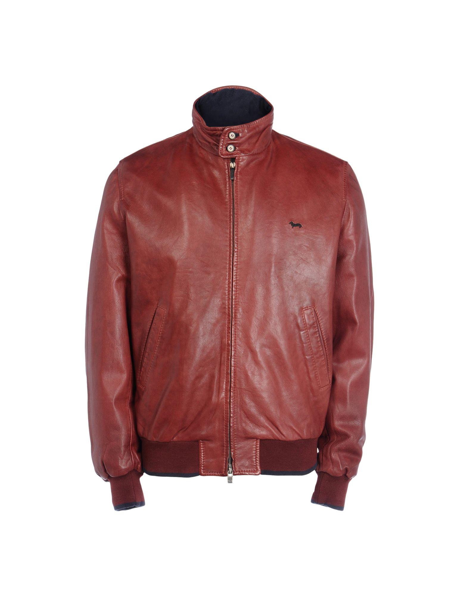 harmont and blaine jacket - photo #41