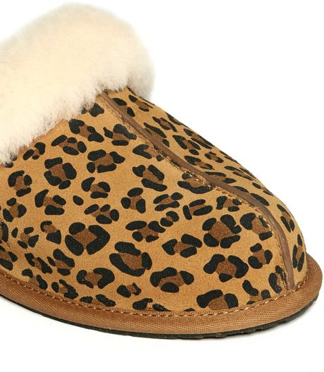 ugg zebra slippers