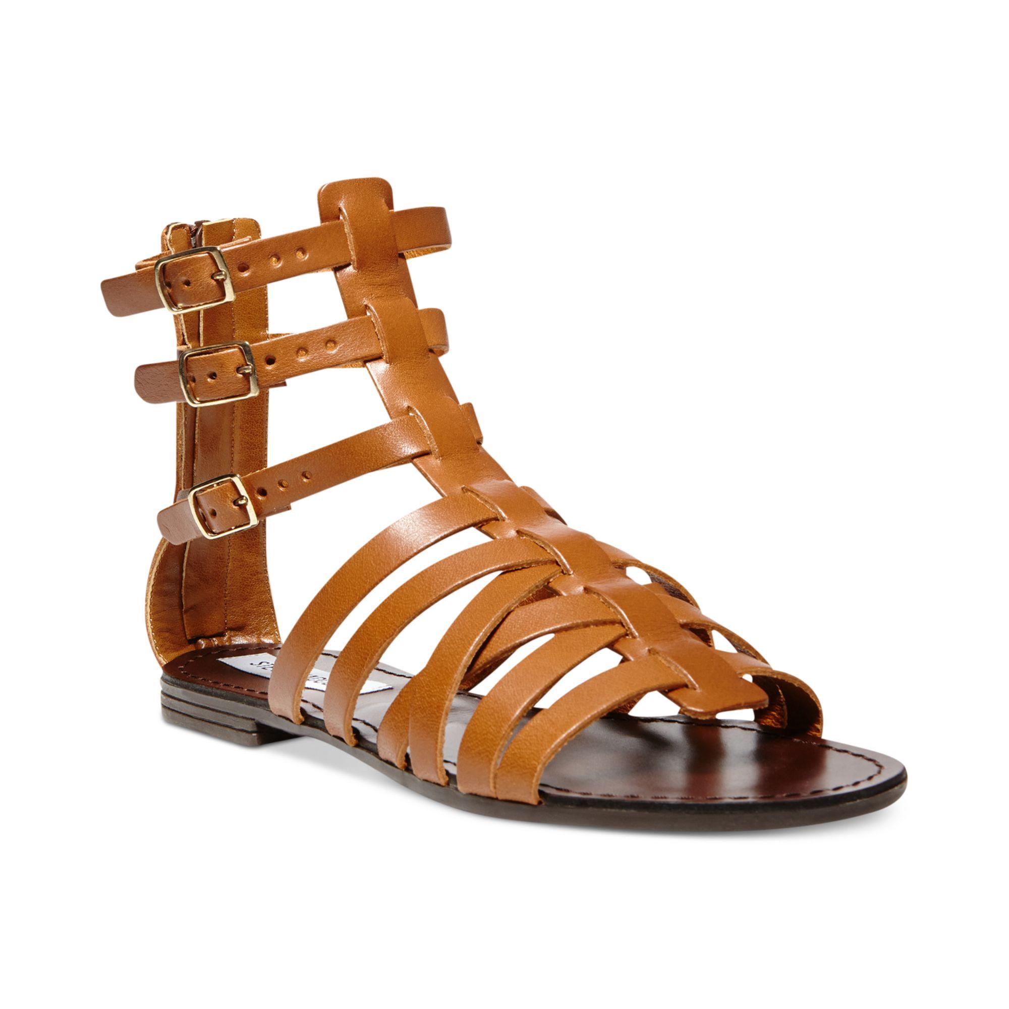 steve madden plato flat gladiator sandals in brown cognac