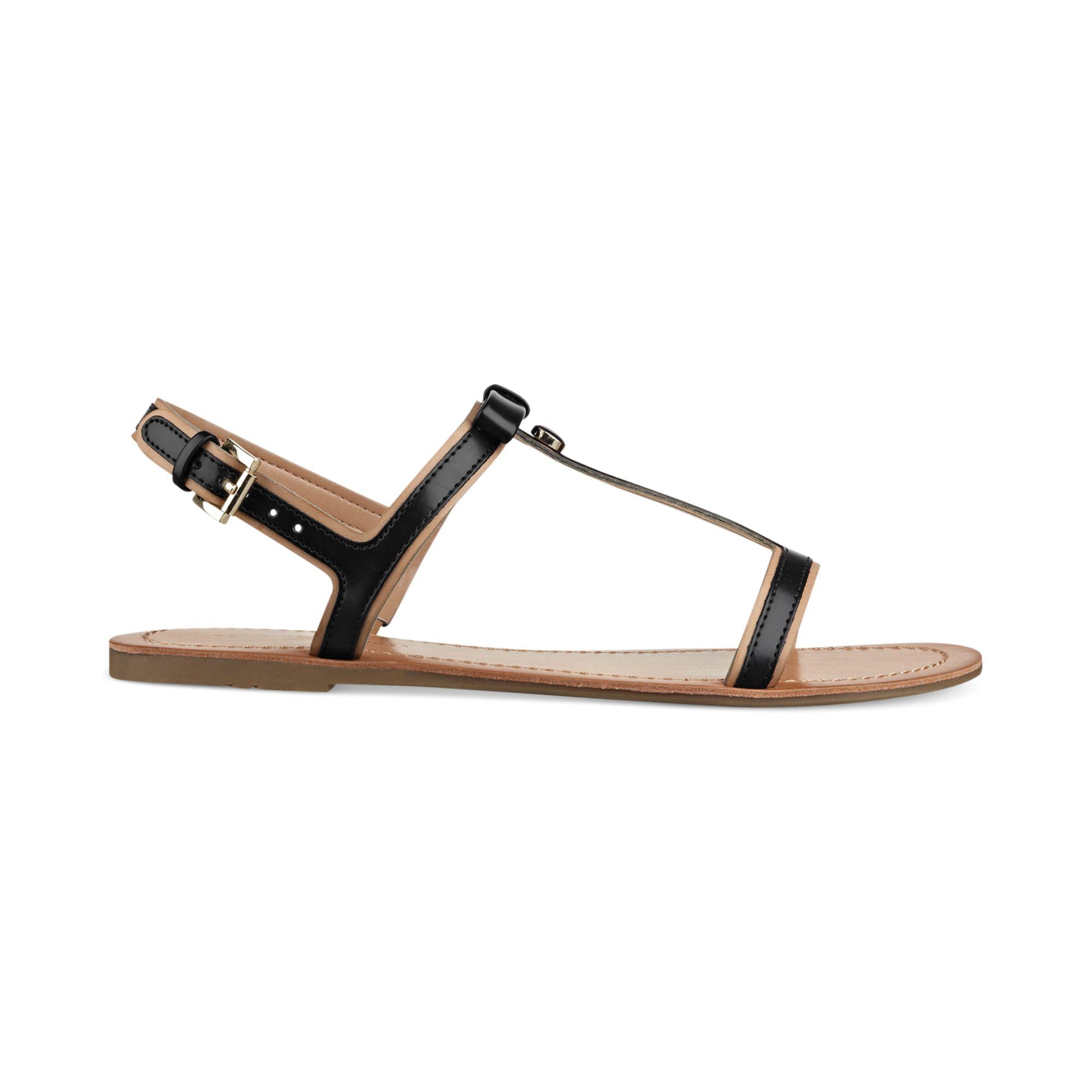 8db912d421970 ... Lyst - Tommy Hilfiger Womens Lisel Flat Sandals in Black super cheap  a5682 d5762 ...