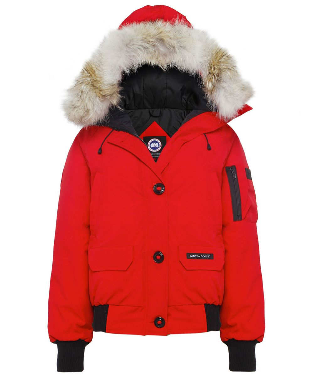 canada goose red chilliwack bomber