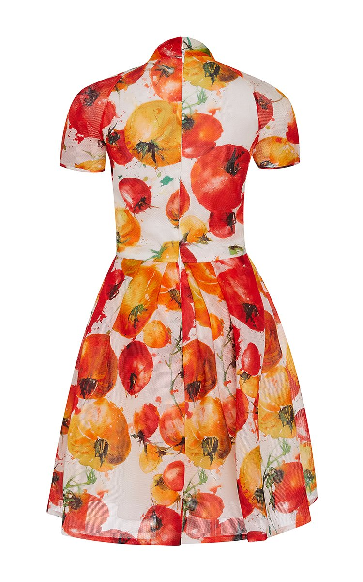 Lyst Naeem Khan Tomato Print Wrap Front Dress In Red