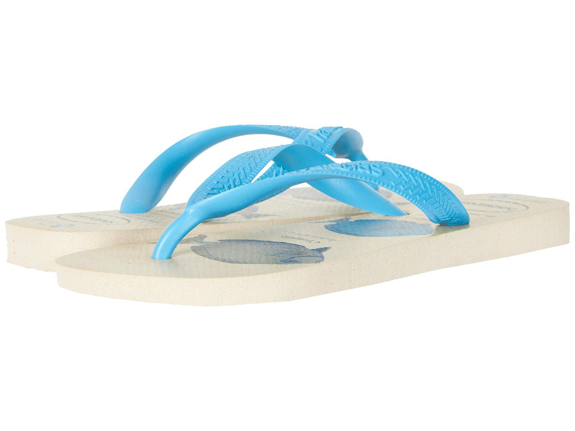 4835c7898 Lyst - Havaianas Conservation International Flip-flops in Blue for Men