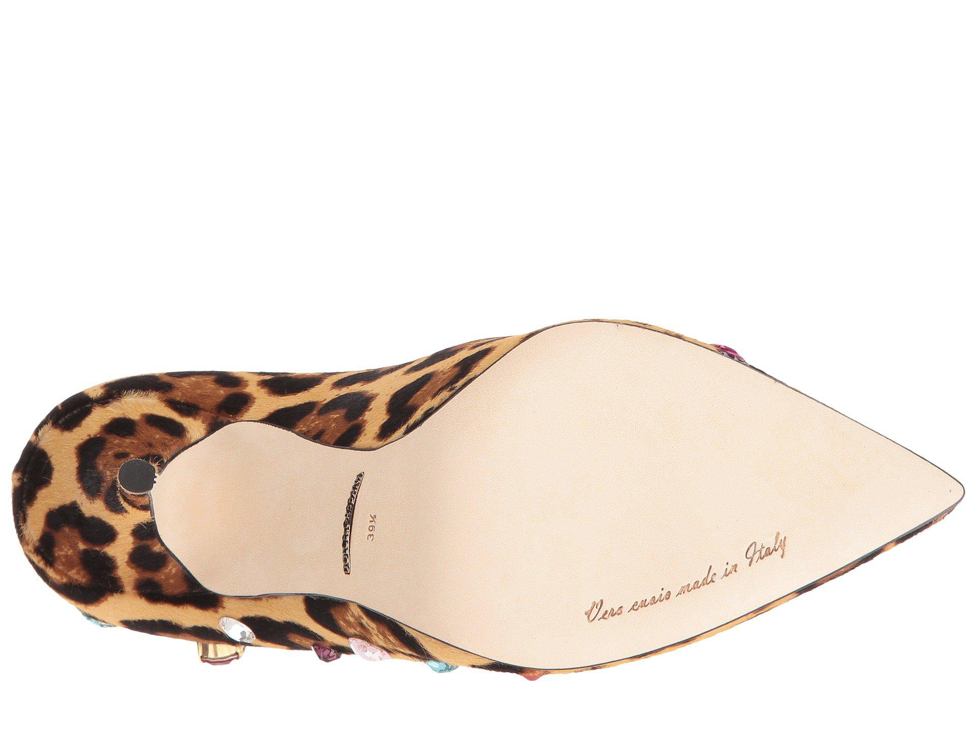 8a8f241eb08c Gallery. Previously sold at: 6PM, Zappos, Zappos Luxury · Women's Dolce  Gabbana Bellucci