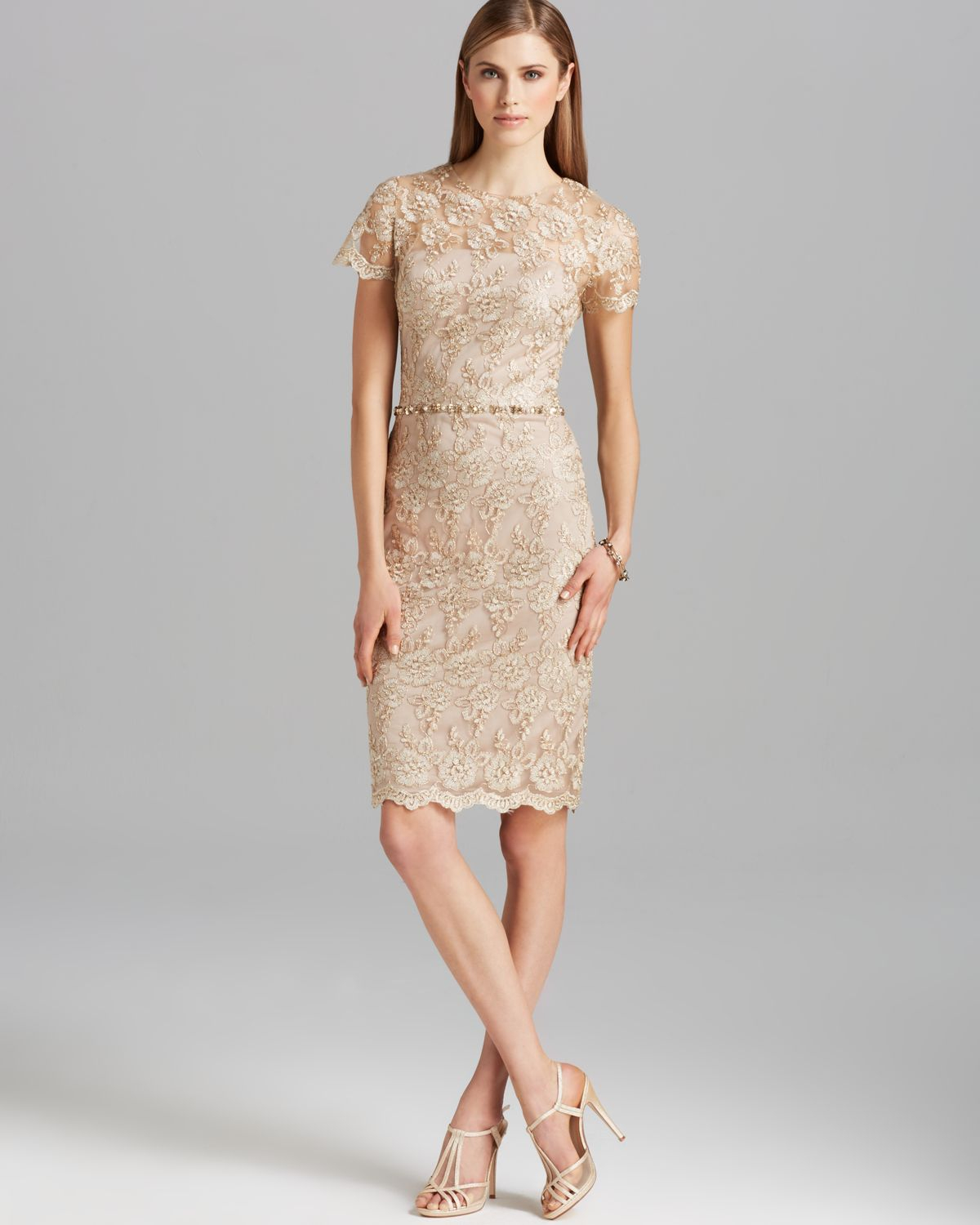 Lace Dresses With Sleeves: David Meister Dress Short Sleeve Metallic Lace