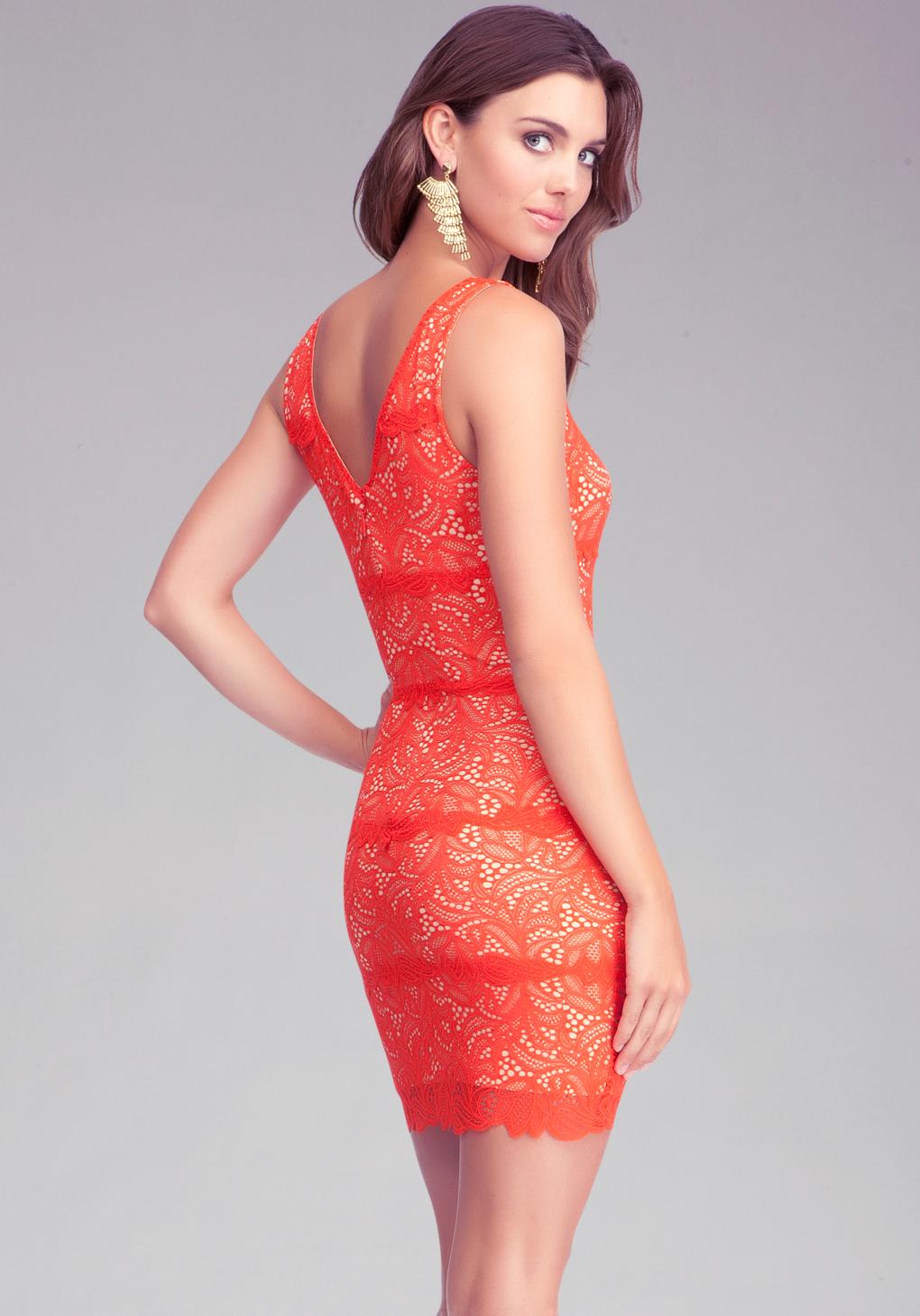 Orange lace bebe dress - Fashion dresses