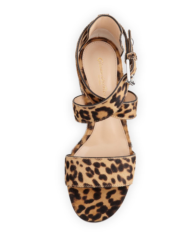 bf47c355c29b Lyst - Gianvito Rossi Leopard-Print Calf Hair Low-Heel Sandal