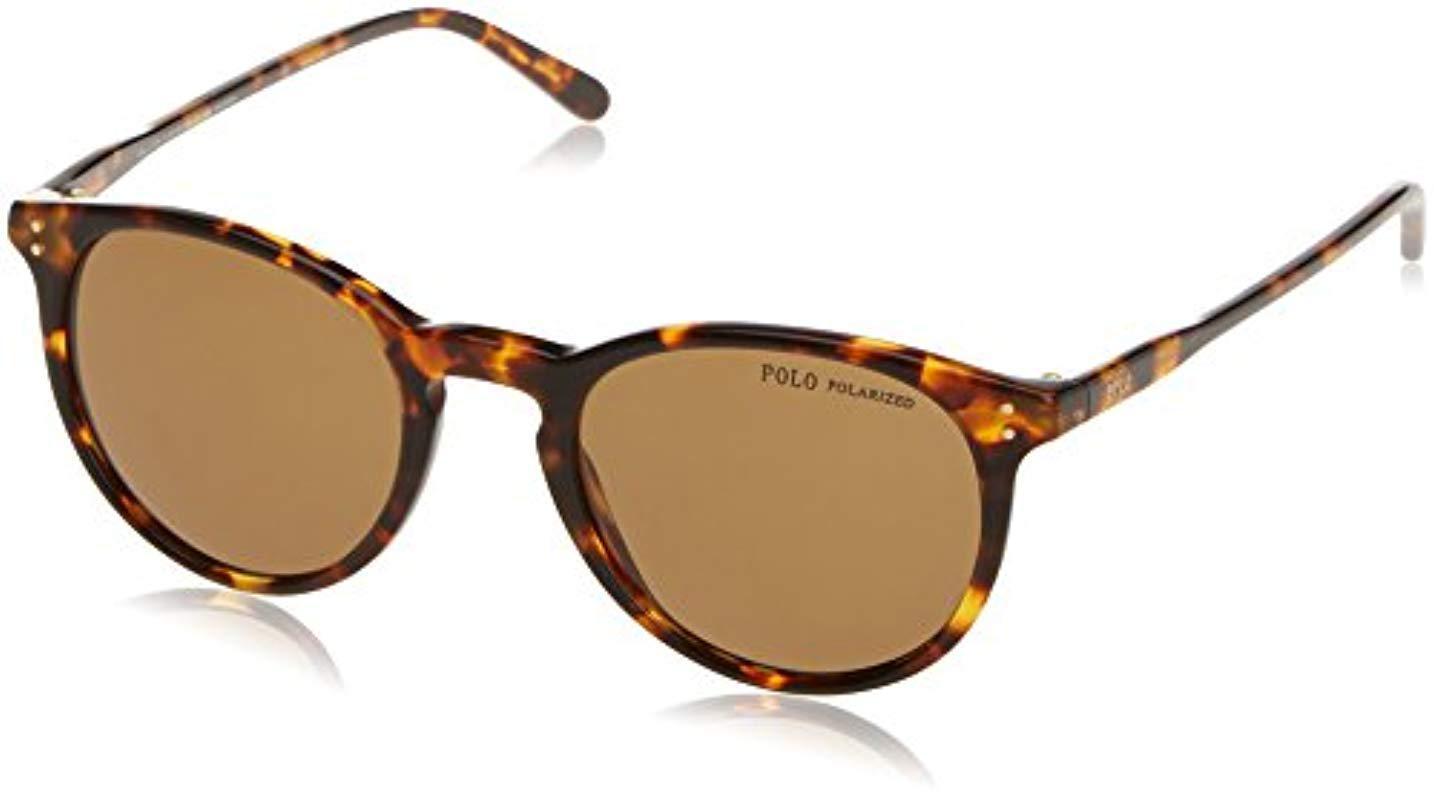 7ed3413b8a2 Lyst - Polo Ralph Lauren 0ph4110 Wayfarer Sunglasses in Brown for ...