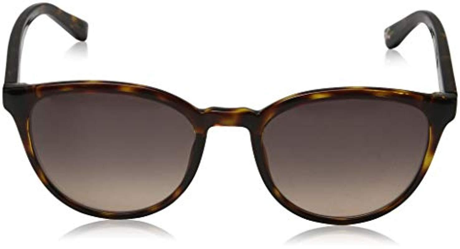 bf2821667c5 Ted Baker Sunglasses Cecile Sunglasses