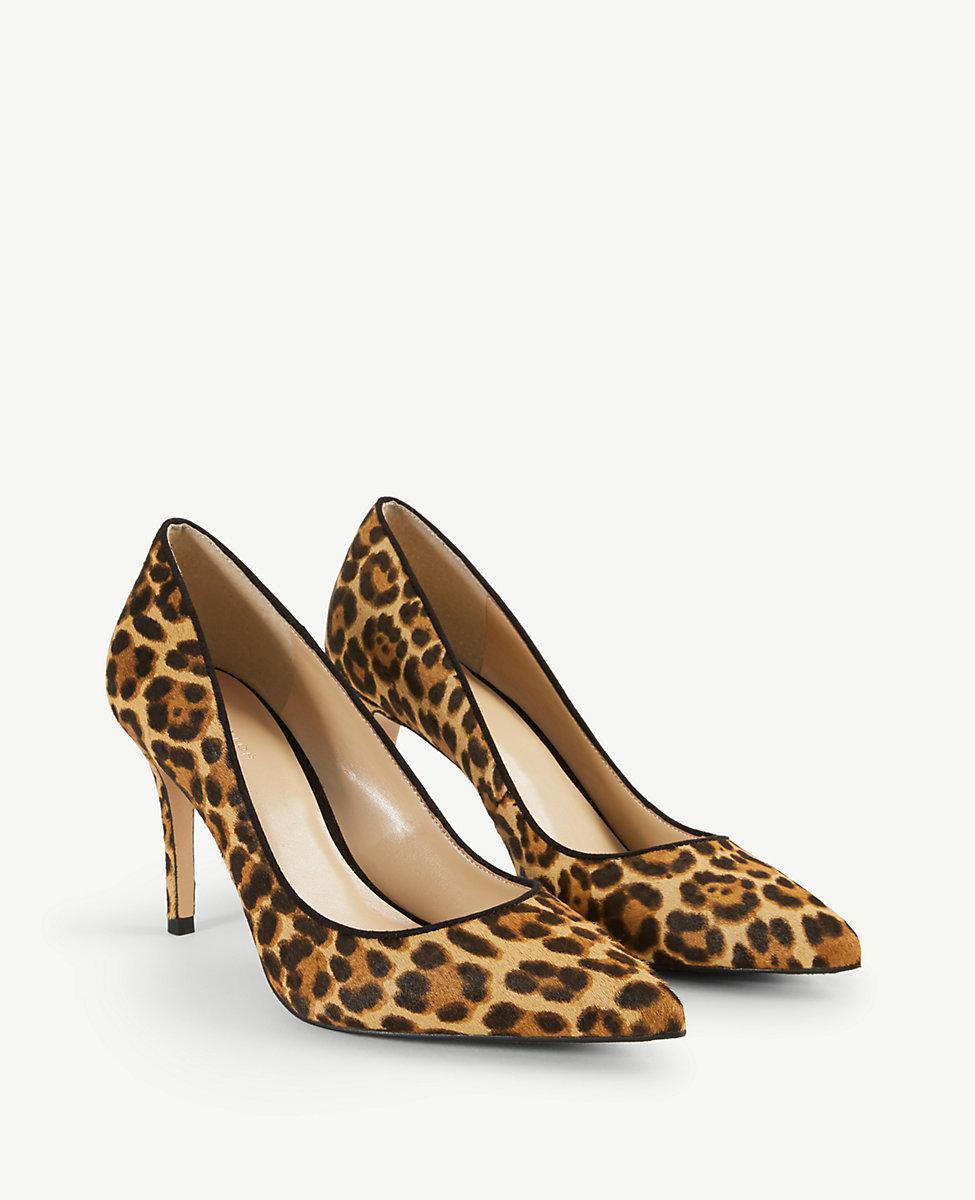1602e0f53524 Lyst - Ann Taylor Mila Leopard Print Haircalf Pumps in Brown