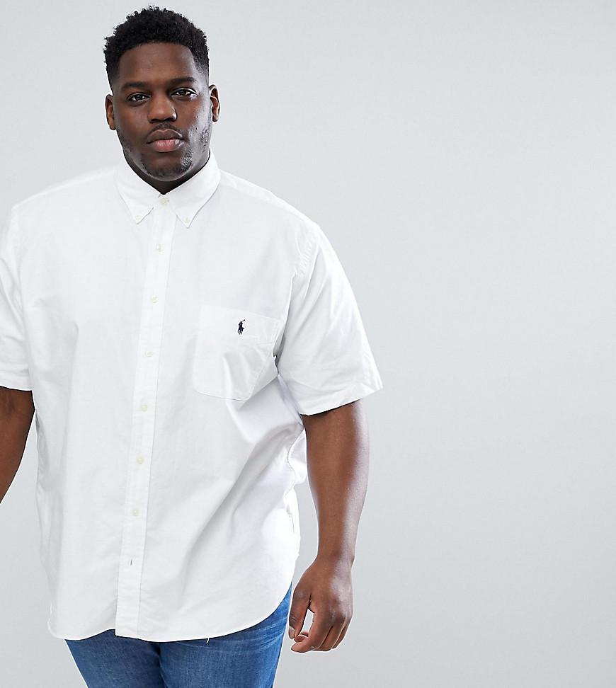 f11a689e4258 Polo Ralph Lauren Big   Tall Short Sleeve Oxford Shirt Button Down ...