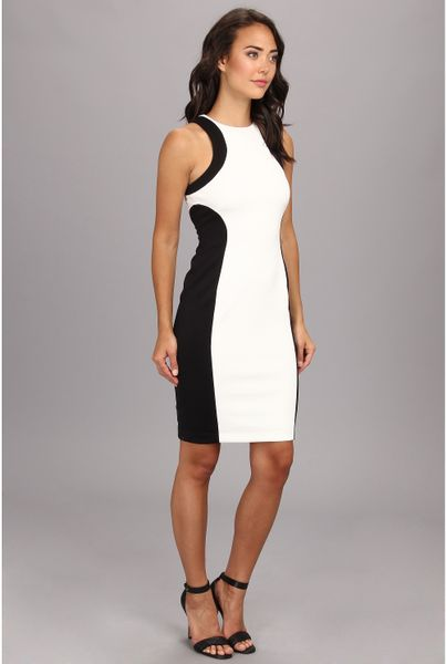 Maggy London Sleeveless Scuba Color Block Dress In Black