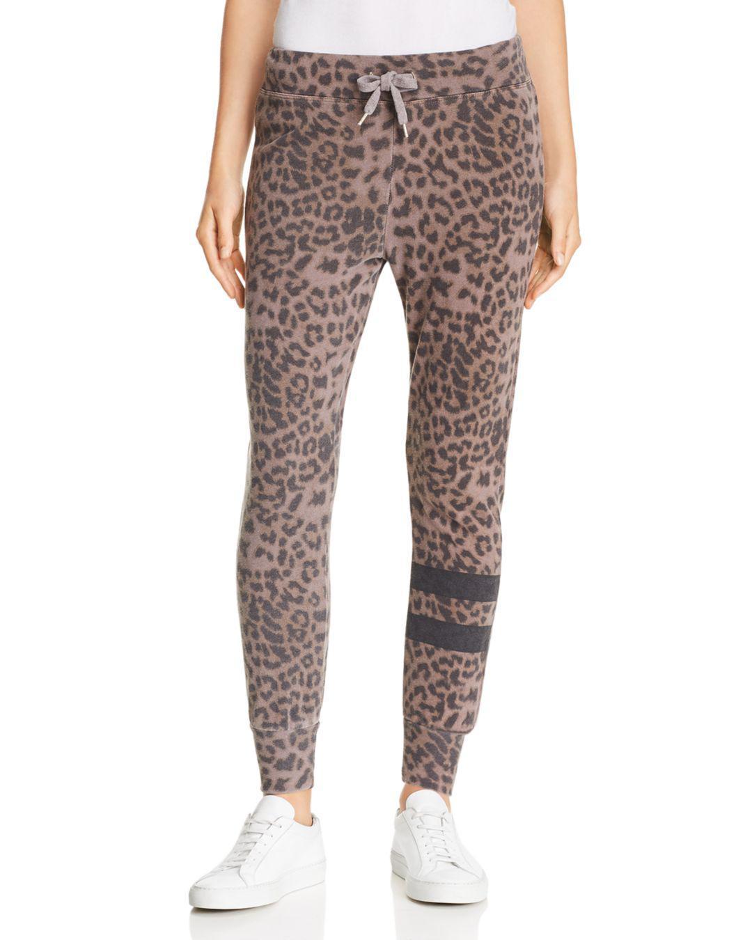 0587f44f91e9 Sundry Women's Leopard Print Joggers - Pigment Mink - Lyst