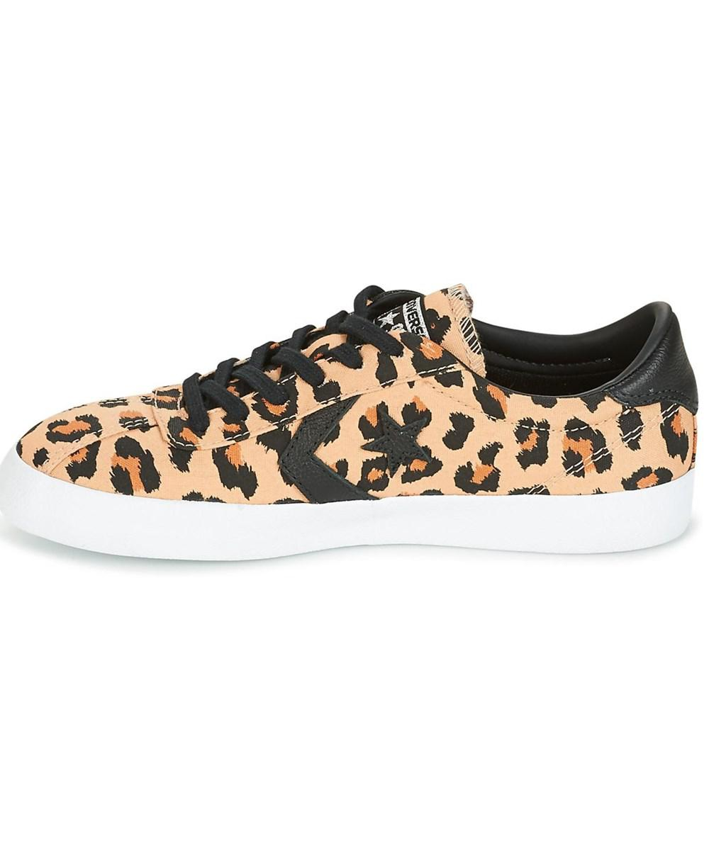 converse breakpoint animal