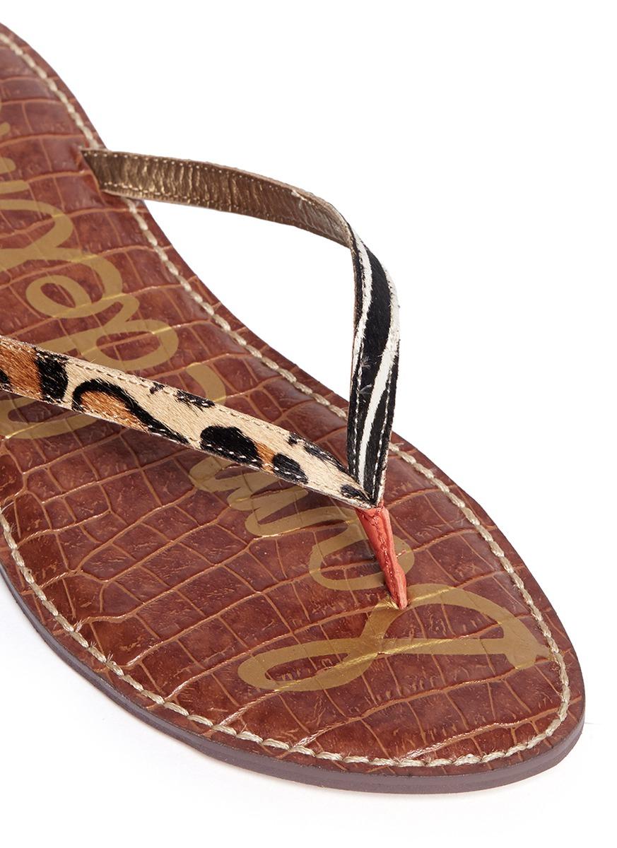 ececbe7e09cb Lyst - Sam Edelman Gracie Calf Fur Leather Strap Flip-flops in Brown