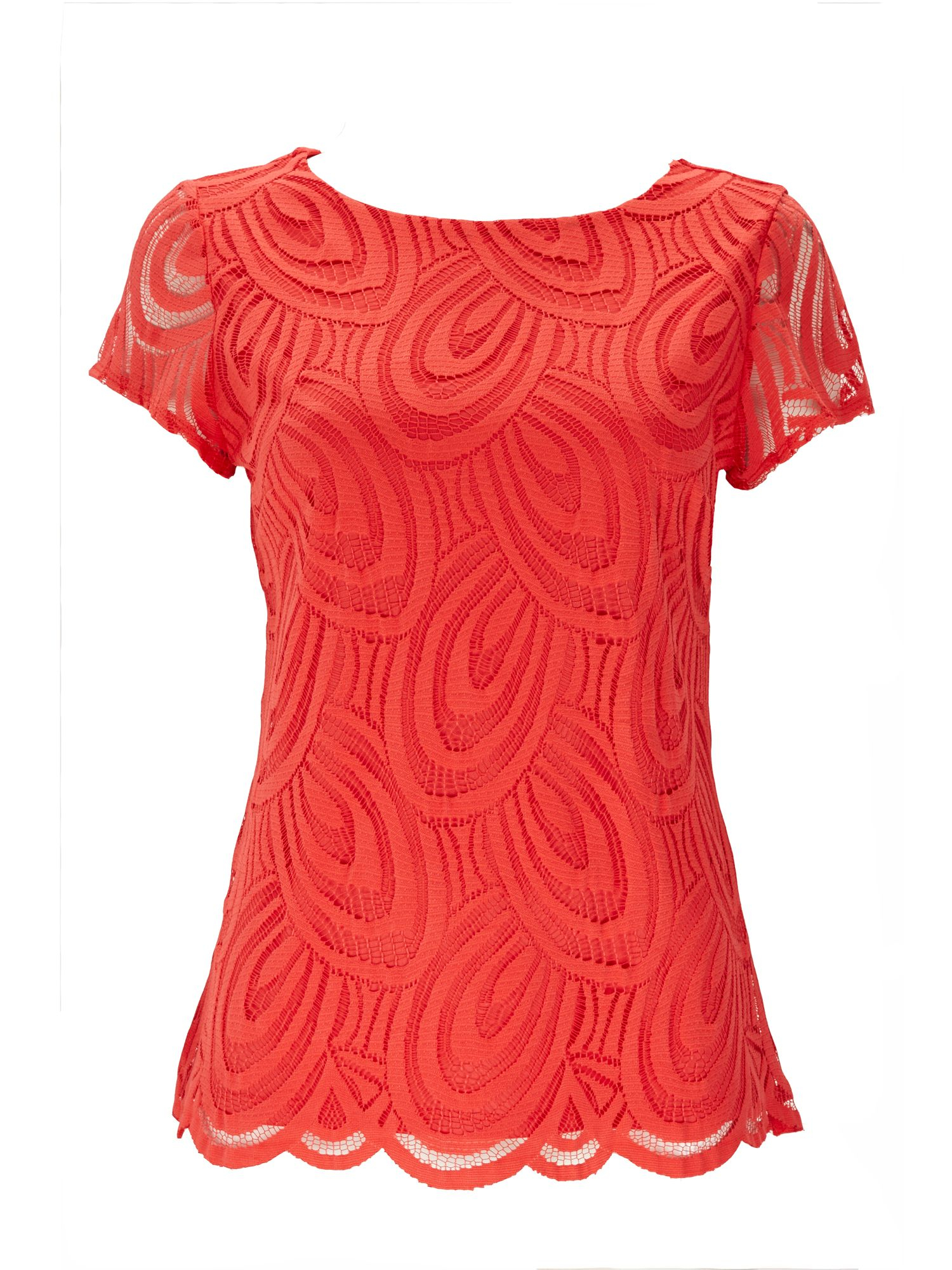 Wallis Coral Lace Top in Red (Coral) | Lyst