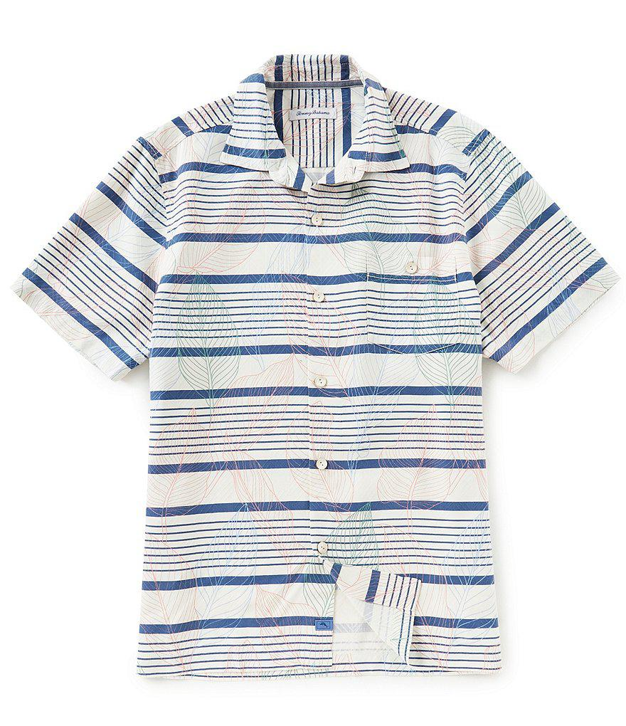 Dillards Mens Polo Shirts Sale Carrerasconfuturo Com
