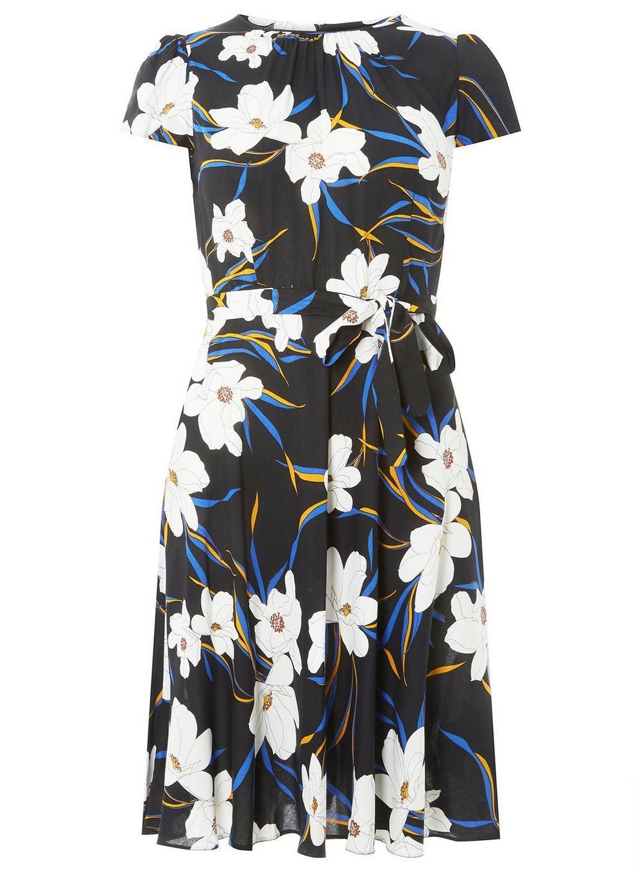 17eb911af7 Dorothy Perkins. Women s Billie   Blossom Tall Black Floral Skater Dress