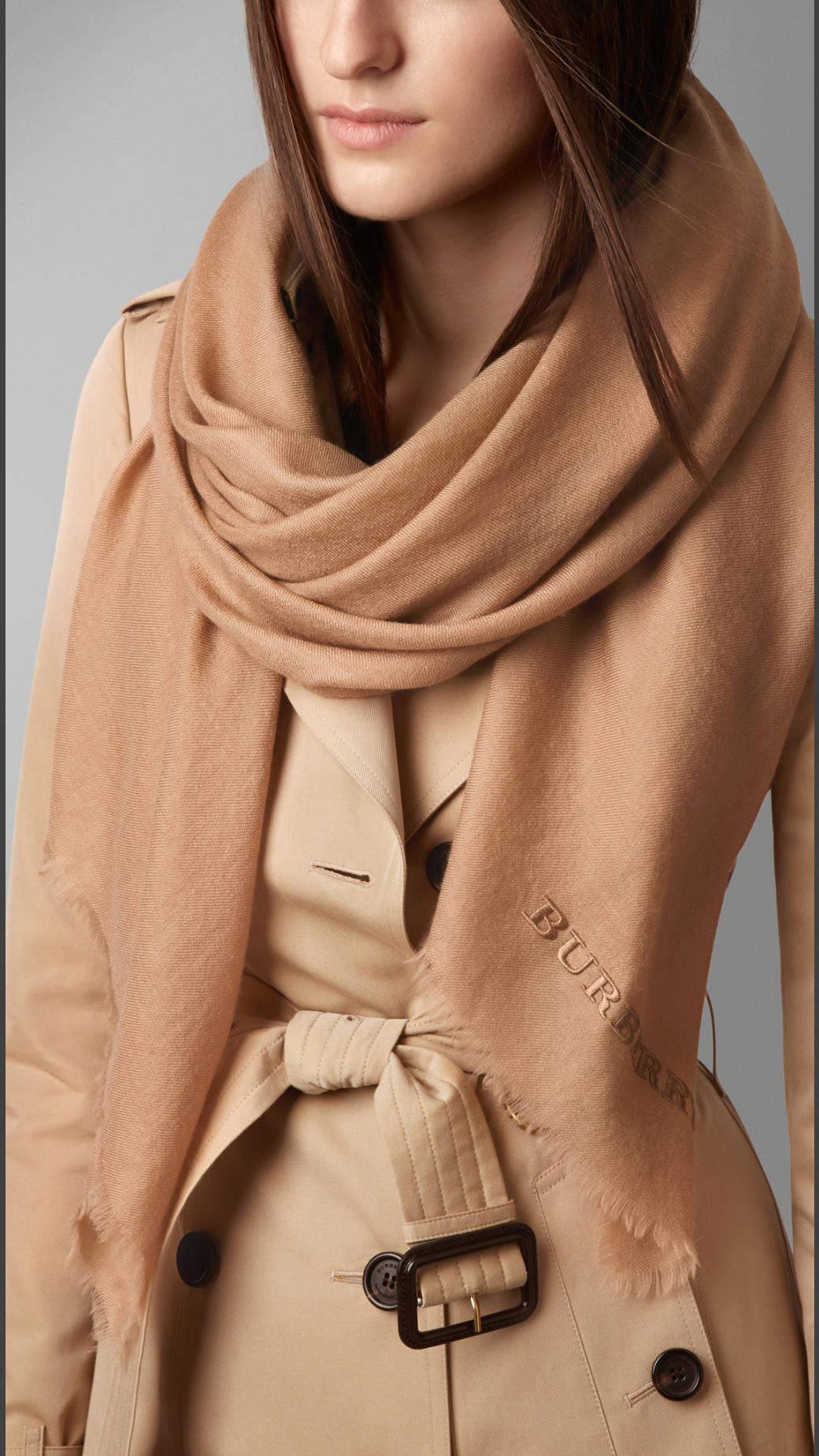 100 Cashmere Scarf >> Lyst - Burberry Embroidered Lightweight Cashmere Scarf in ...