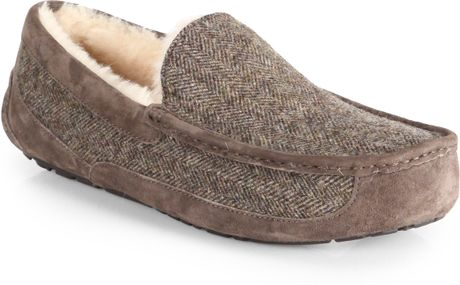 ugg ascot tweed review