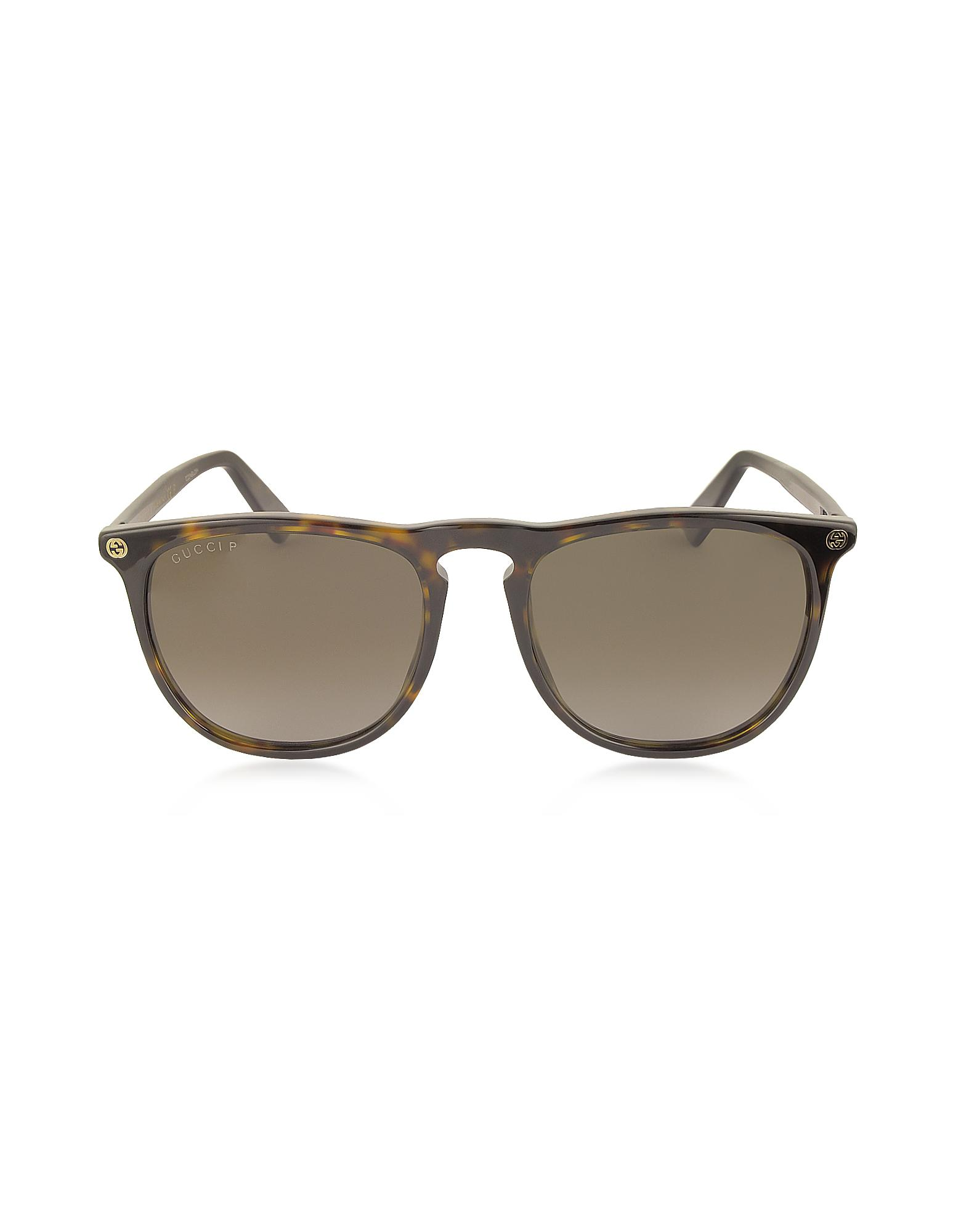 429be9bda552 Gucci GG0120S 006 Havana Acetate Rounded Square Men's Polarized ...