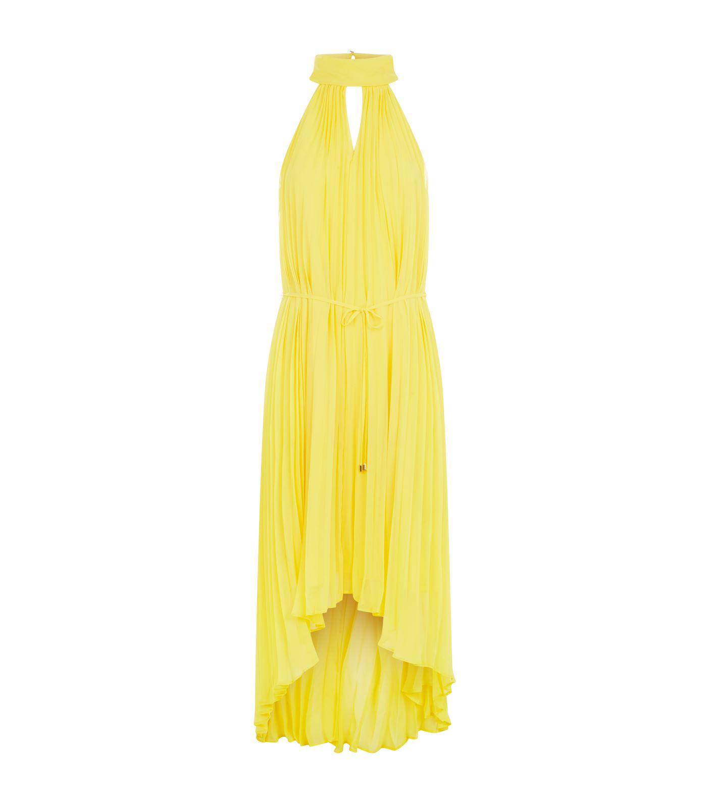 472724f9bd6ee9 Lyst - Ted Baker Nadette Pleated Maxi Dress in Yellow