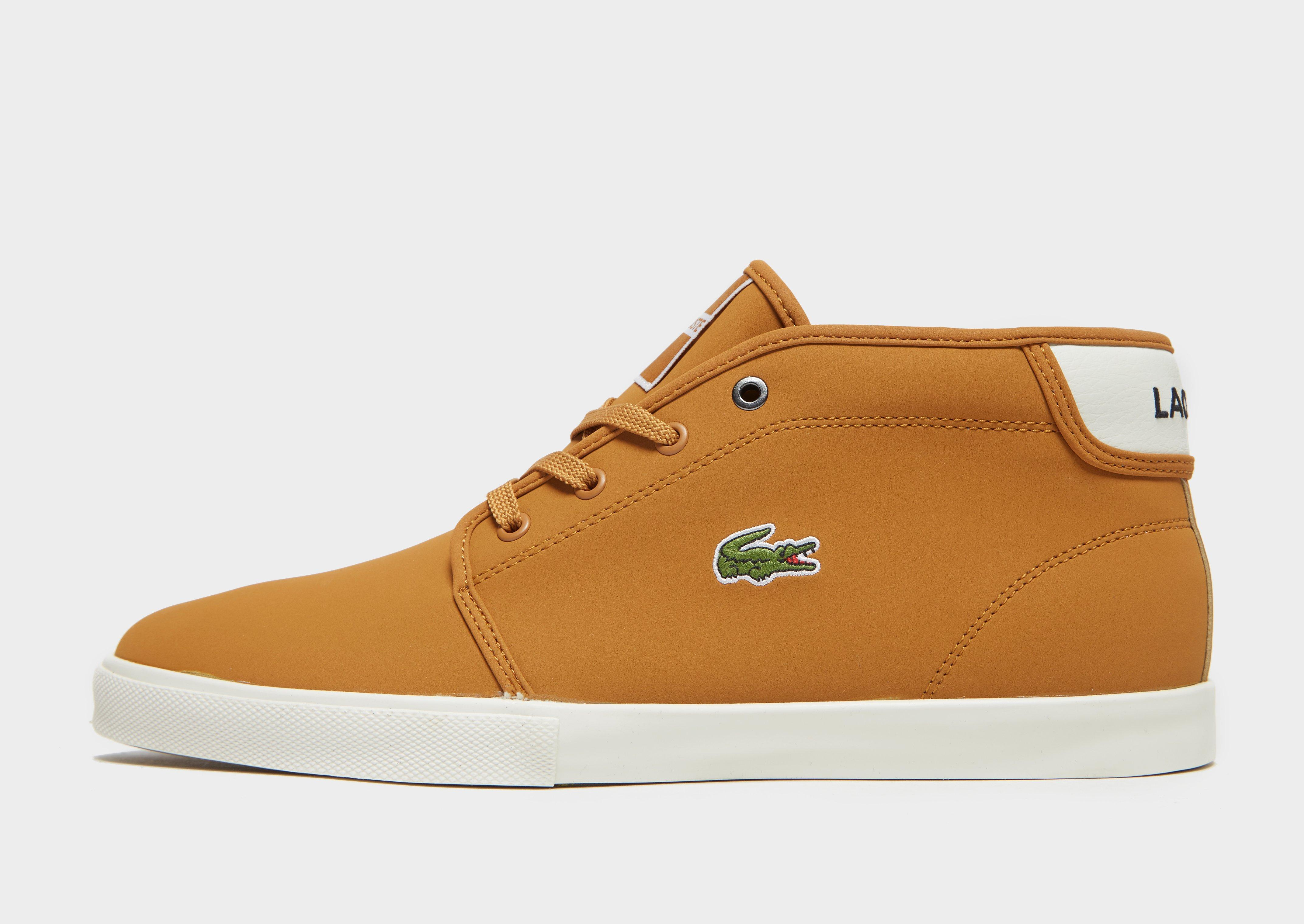 a39c03fb7 Lyst - Lacoste Ampthill in Brown for Men