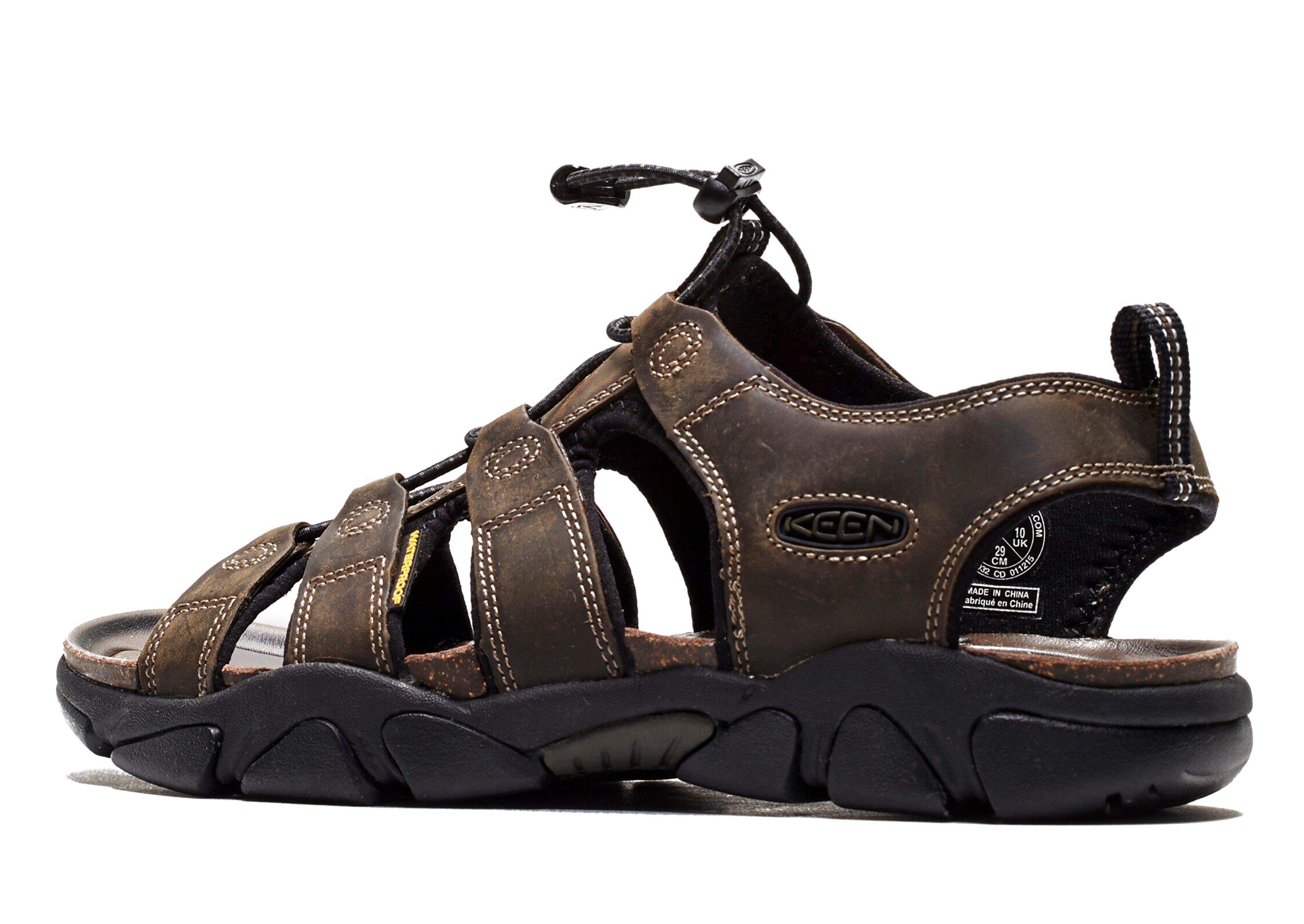 Keen Daytona Sandal In Brown For Men Lyst