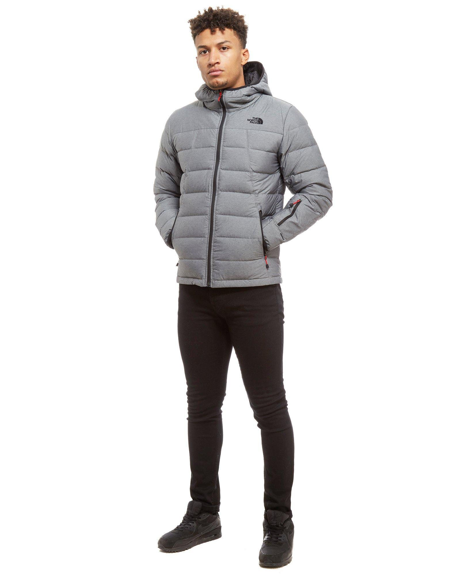 ... hot the north face shark down padded jacket in gray for men lyst 4c627  305ae bdbde7035