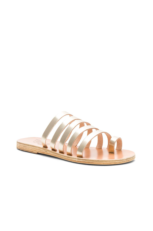Ancient Greek Sandals Niki Vachetta Sandal wAq1Es914o