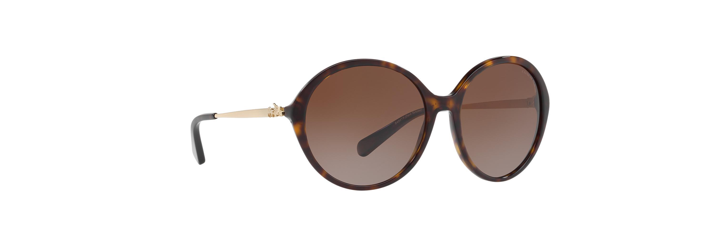 d57a2320232c hot coach hc 8214 black black lens sunglasses fe796 93d3c; uk lyst coach  hc8214 56 l1650 in brown 5670e 8f6c5