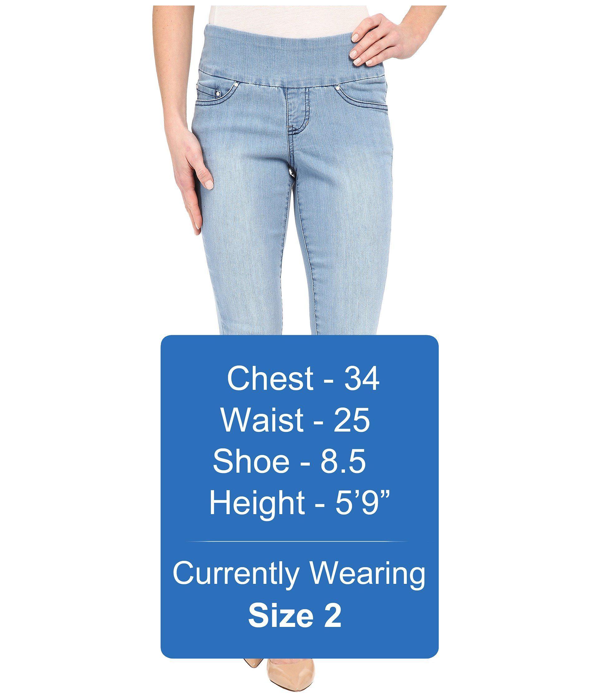 size waist pants gloria pin women comforter charlene dress s comfort black vanderbilt regular jeans