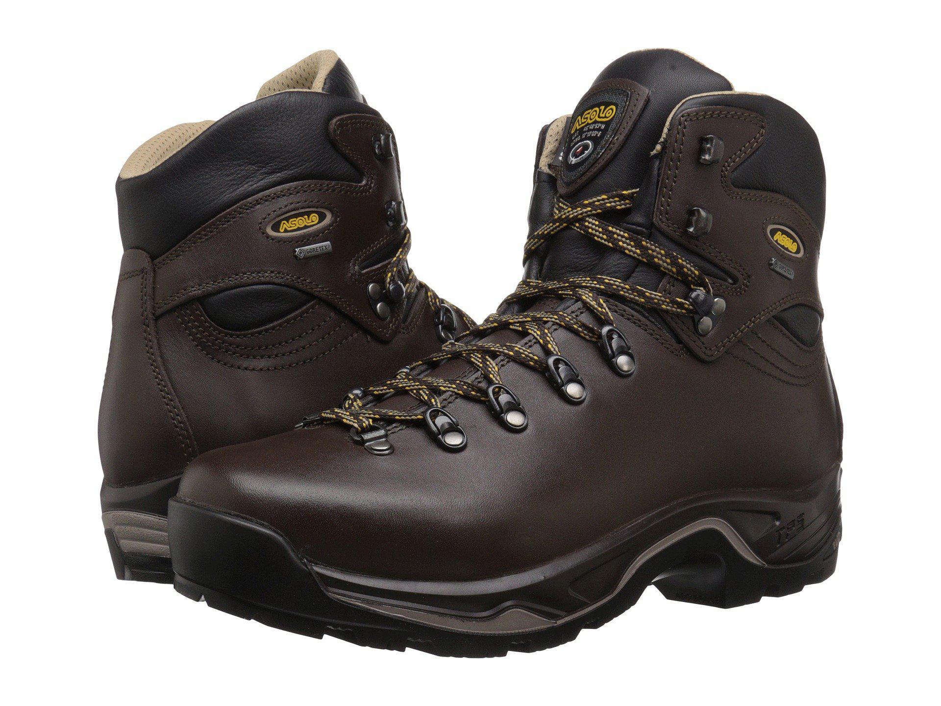 0920c2b14d3 Lyst - Asolo Tps 520 Gv Evo (chestnut) Men s Boots in Brown for Men