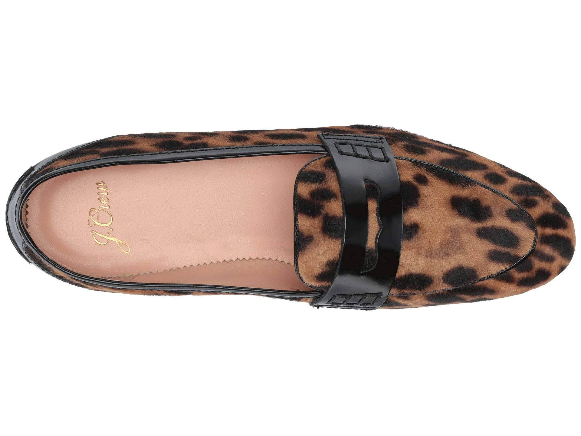 416ffb2cba2 ... Haircalf Academy Penny Loafer (leopard Multi) Women s Shoes -. View  fullscreen